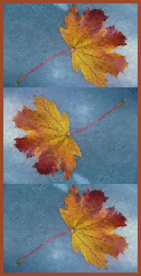 Falling Autumn Leaves Photograph  - Falling Autumn Leaves Fine Art Print