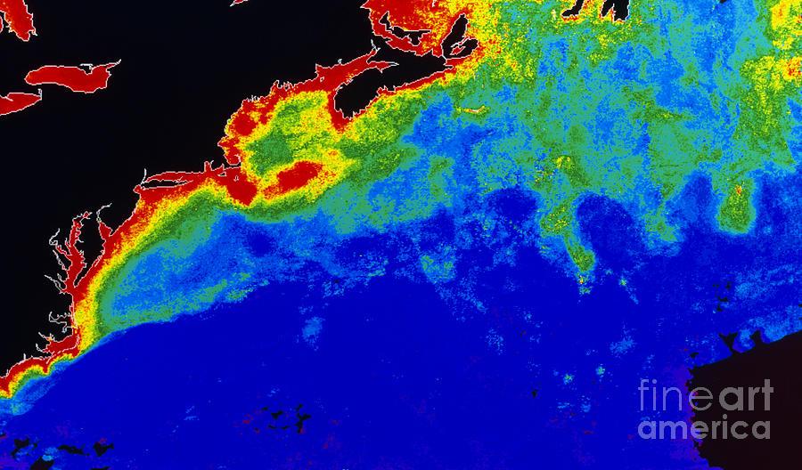 False Col Satellite Image Photograph