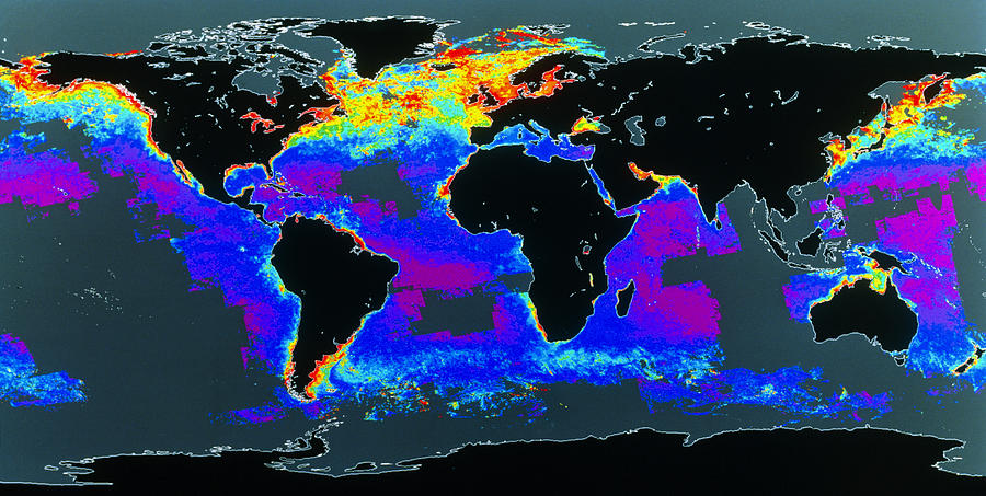 False-col Satellite Image Of Worlds Oceans Photograph