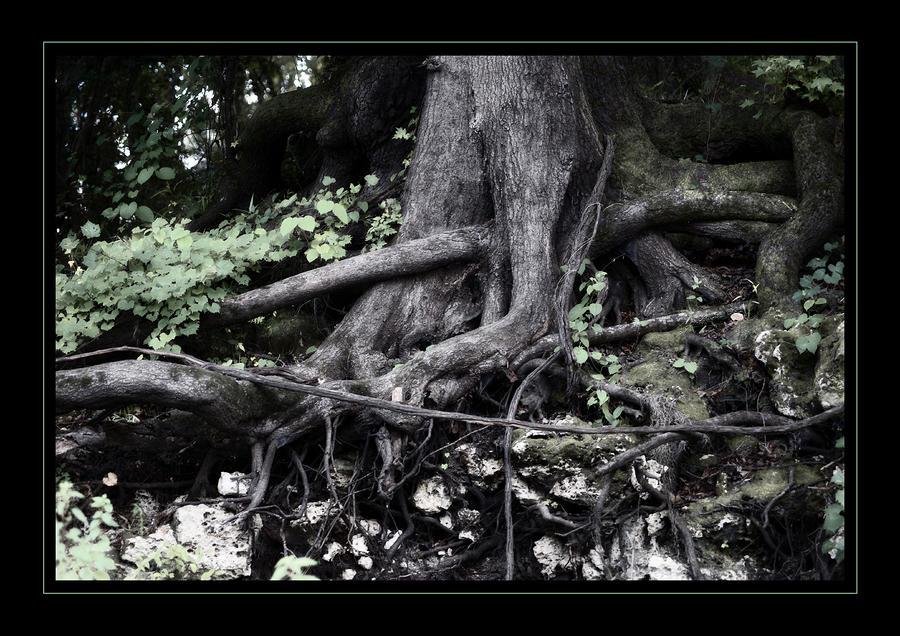 Fantasy Roots Pastel