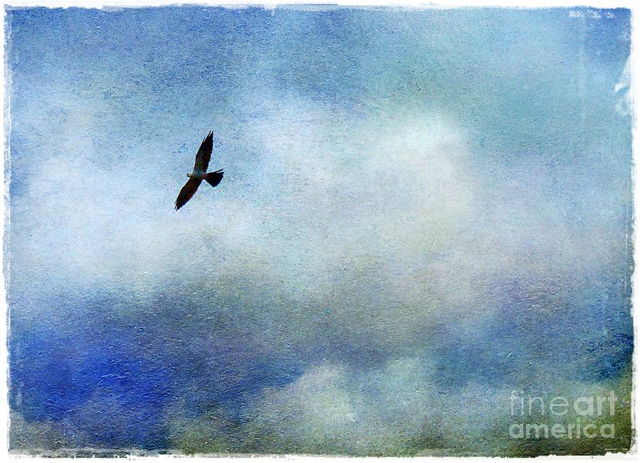 Far Above Photograph  - Far Above Fine Art Print