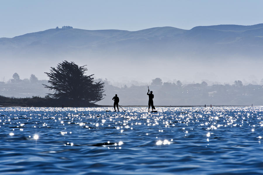 Faraway Paddle Boarders In Morro Bay Photograph