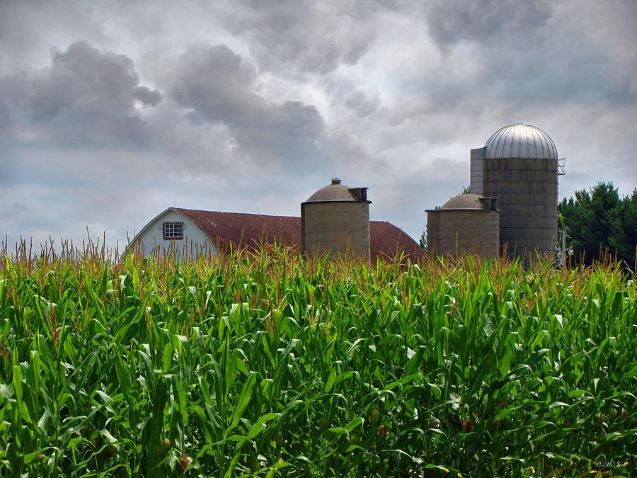 Landscape Photograph - Farm Landscape by Ms Judi
