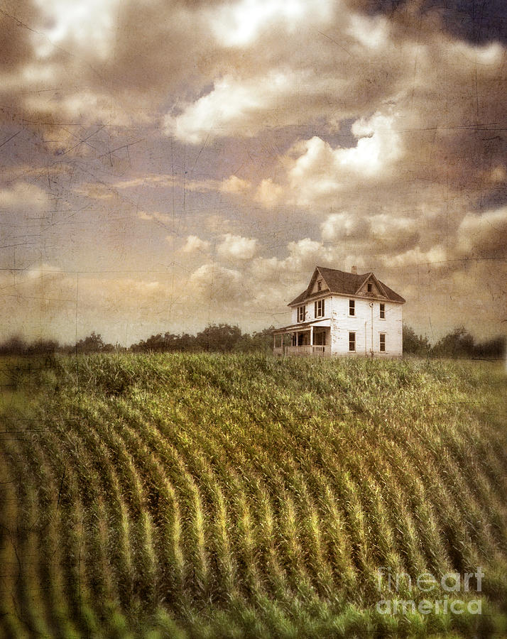 Farmhouse And Cornfield Photograph by Jill Battaglia