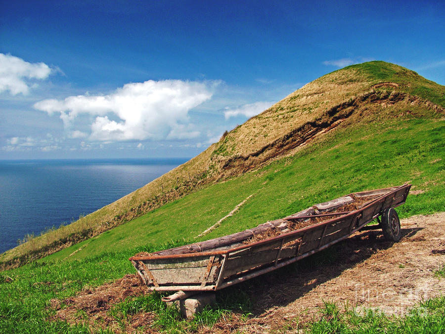 Farming In Azores Islands Photograph