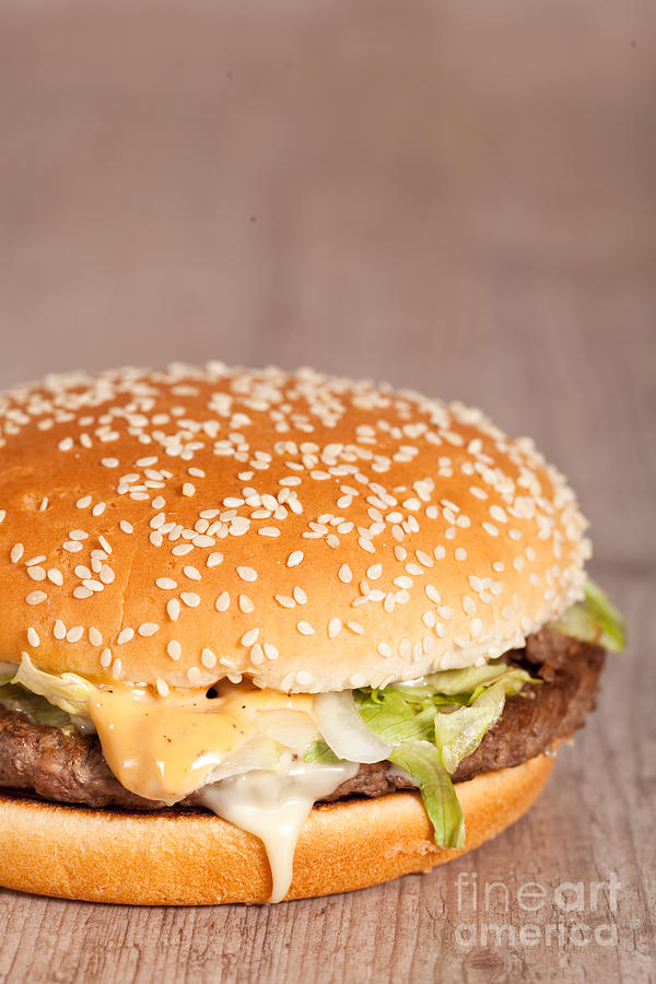 Fat Hamburger Sandwich Photograph  - Fat Hamburger Sandwich Fine Art Print