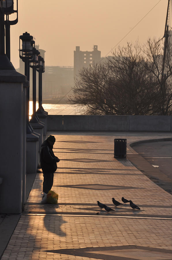 Feeding The Pigeons At Dawn Photograph  - Feeding The Pigeons At Dawn Fine Art Print
