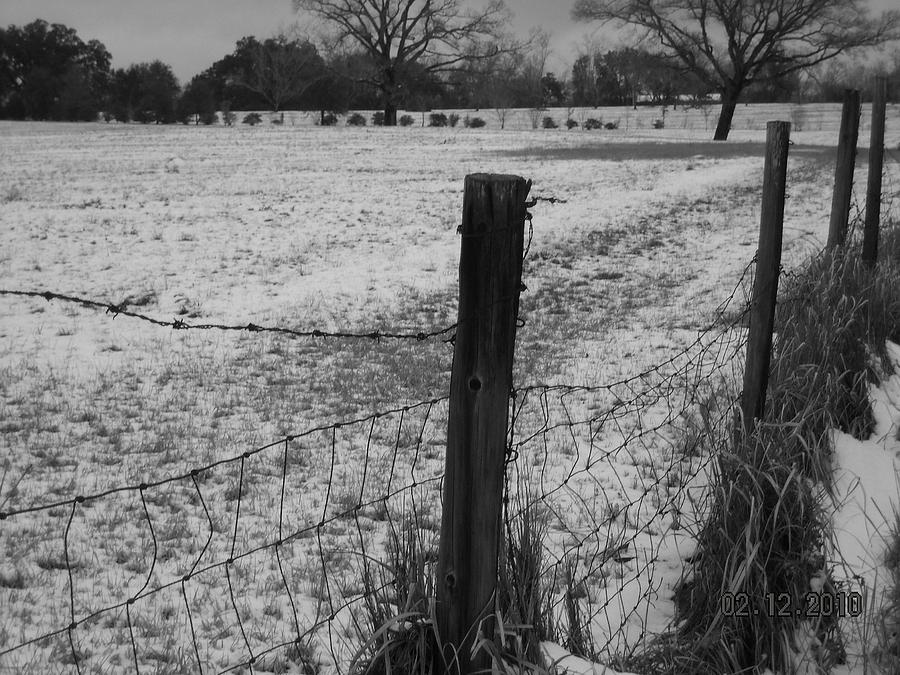 Fence And Snow Photograph  - Fence And Snow Fine Art Print