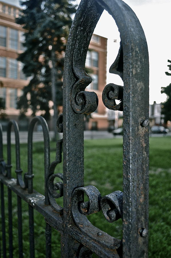 Fence Photograph