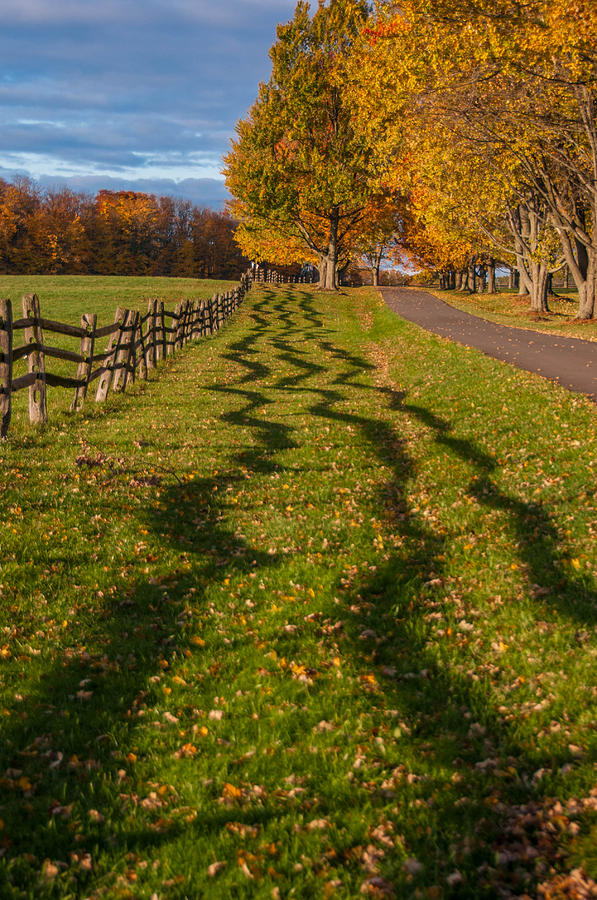 East Aurora Ny Photograph - Fence by Guy Whiteley