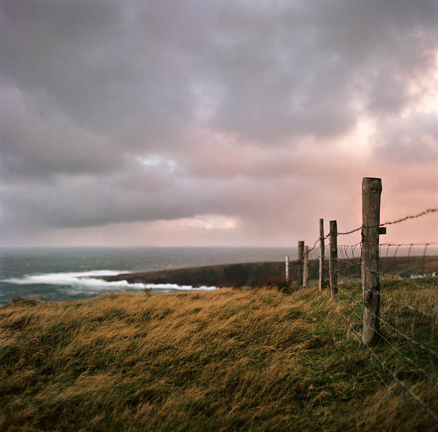 Fence In Ireland Photograph