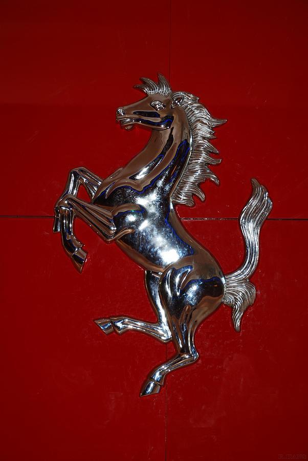 Ferrari Stallion Photograph