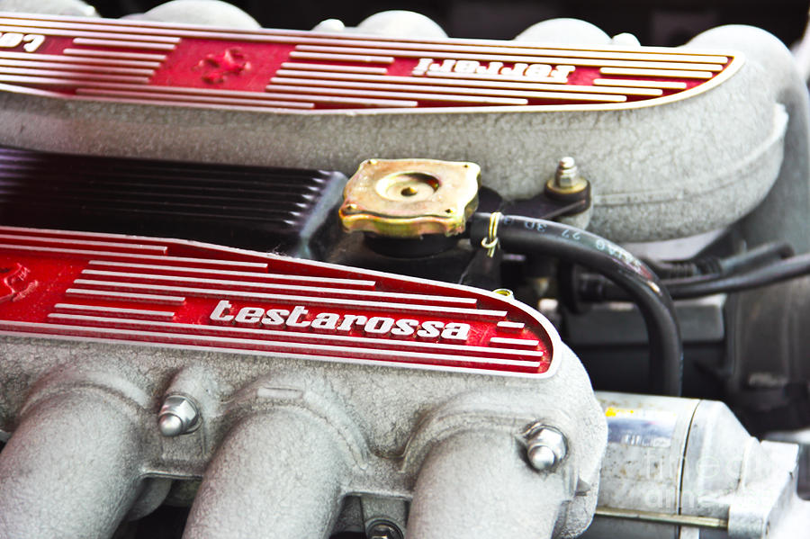 Ferrari Testarossa Photograph