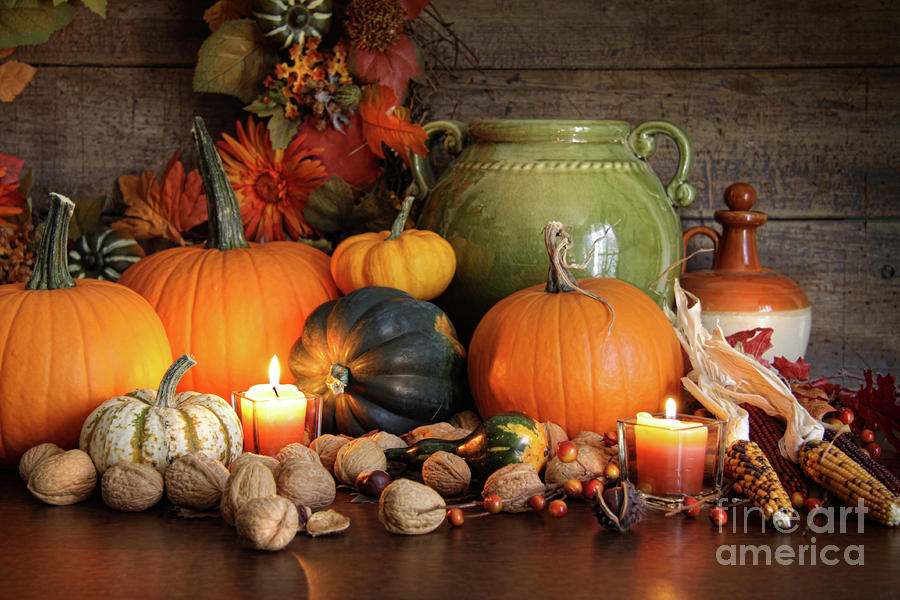 Festive Autumn Variety Of Gourds And Pumpkins  Photograph