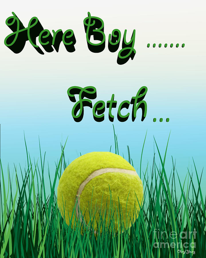 Fetch Photograph