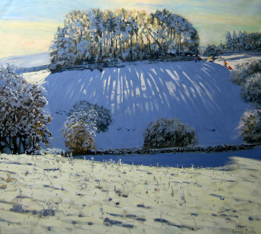Sledging Painting - Field Of Shadows by Andrew Macara
