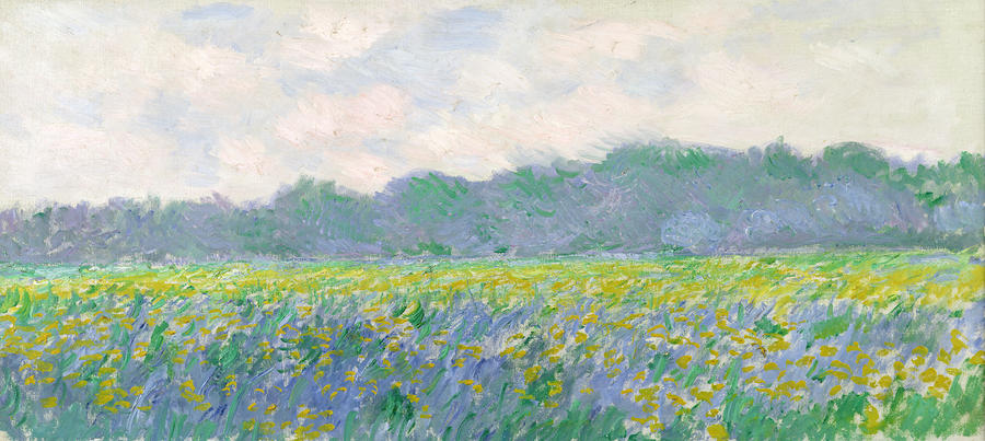 Field Of Yellow Irises At Giverny Painting