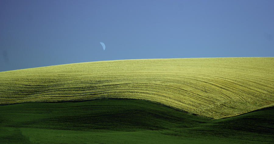 Fields And Quarter Moon Photograph