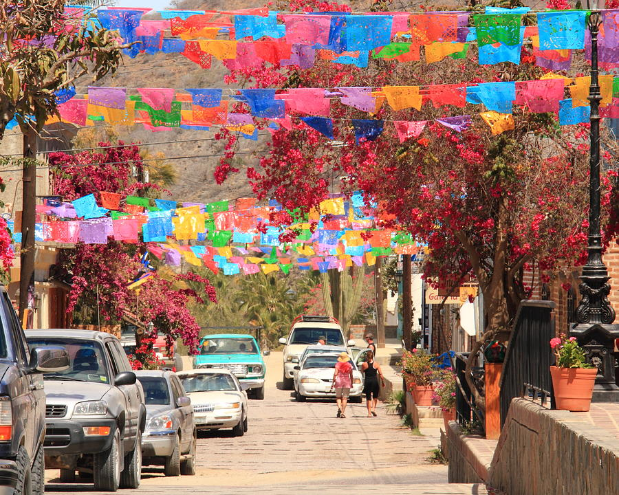Todos Santos Mexico  city photo : ... Todos Santos Mexico Photograph Fiesta Flags In Todos Santos Mexico