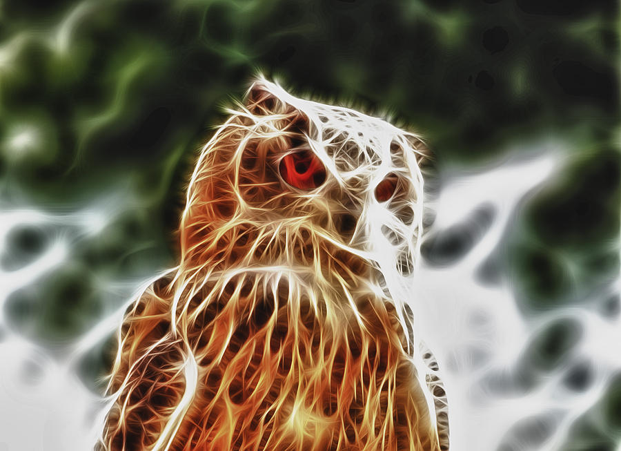 Fire Owl Digital Art