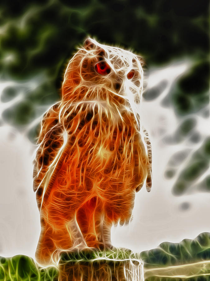 Fire Owl V1 Digital Art  - Fire Owl V1 Fine Art Print