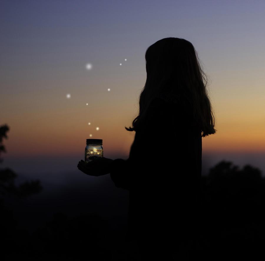 Fireflies Photograph