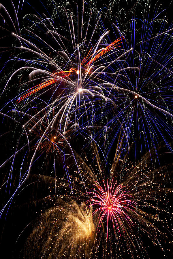 Fireworks Celebration  Photograph  - Fireworks Celebration  Fine Art Print