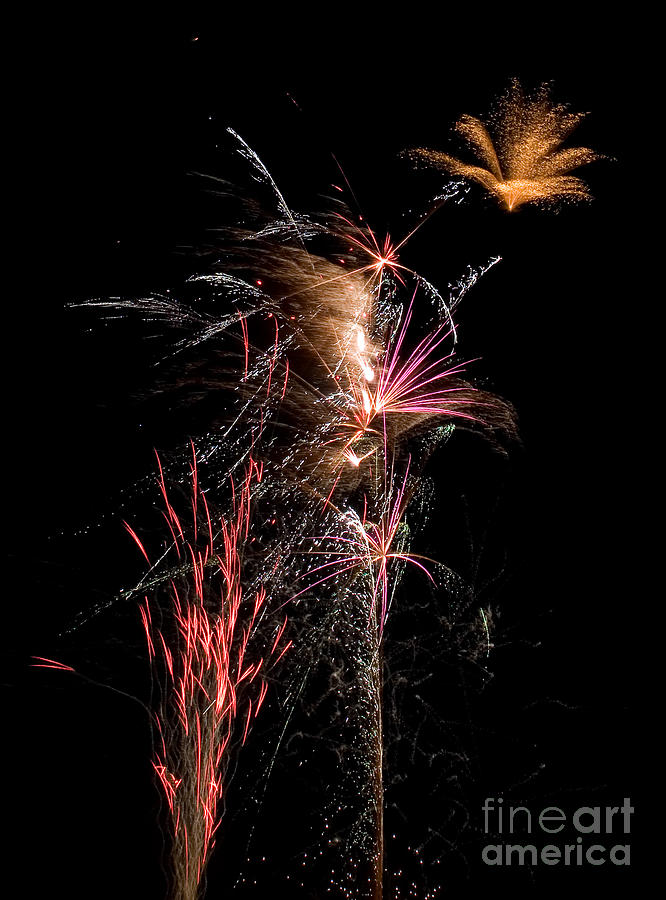 Fireworks Photograph - Fireworks by Cindy Singleton