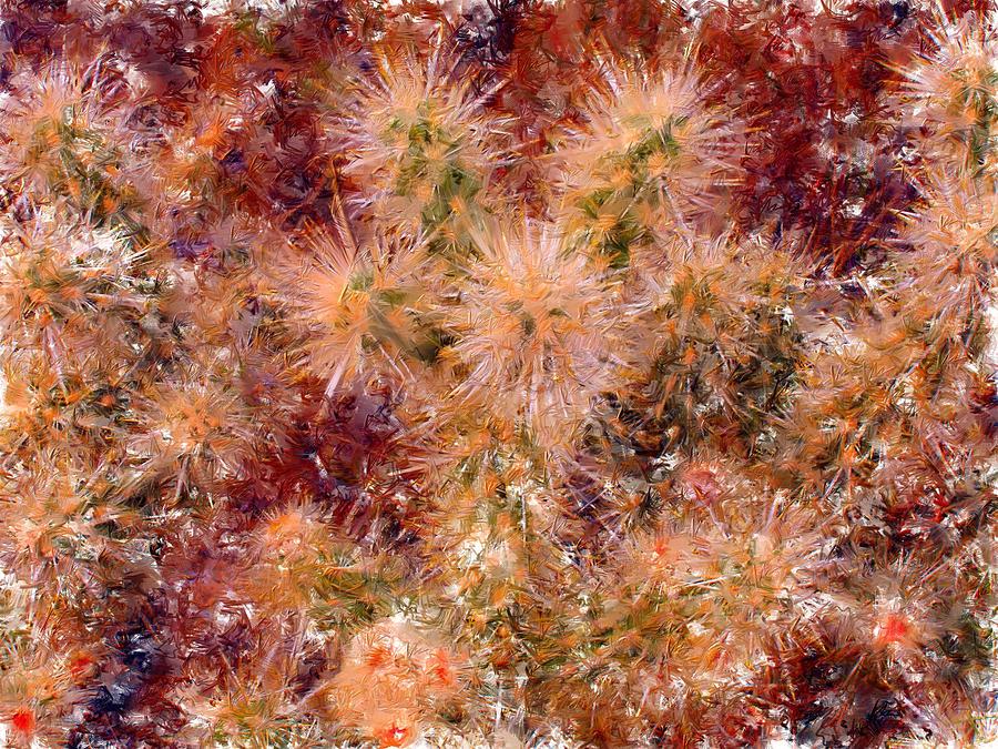 Fireworks Digital Art - Fireworks Explosion by Marilyn Sholin