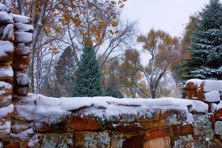 First Colorful Autumn Snow Photograph  - First Colorful Autumn Snow Fine Art Print