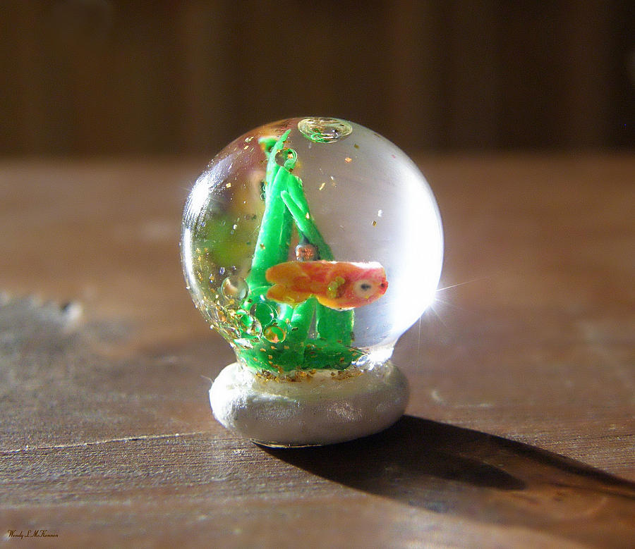 Miniature Snowglobe Canvas Prints Sculpture - Fish Globe by Wendy McKennon