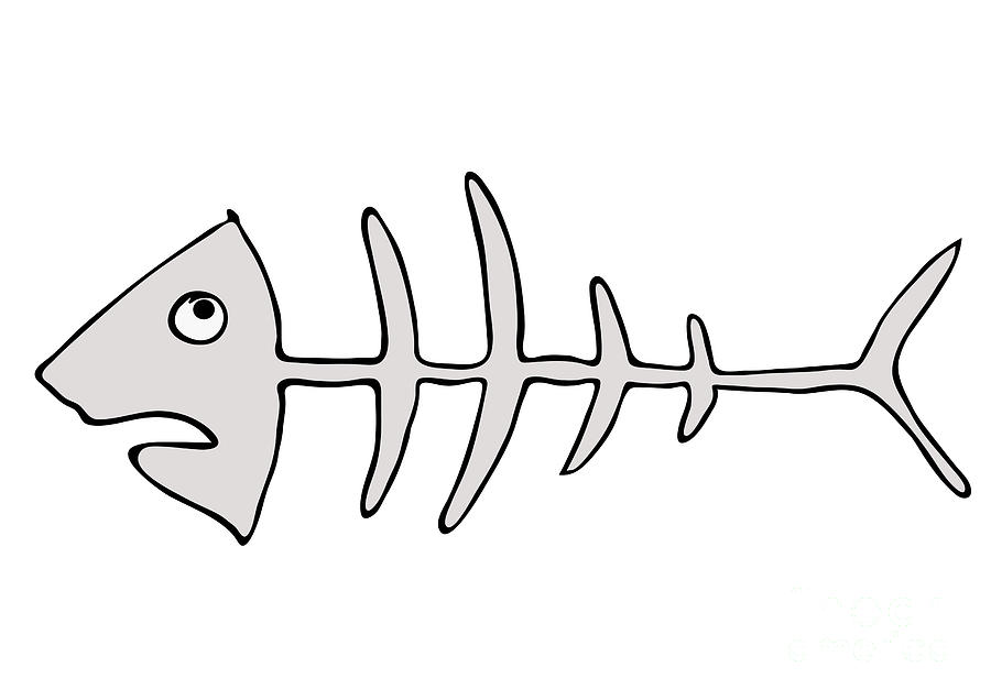 Fish Skeleton - Fishbones Drawing  - Fish Skeleton - Fishbones Fine Art Print