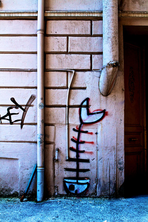 Fishbone Graffiti Photograph  - Fishbone Graffiti Fine Art Print