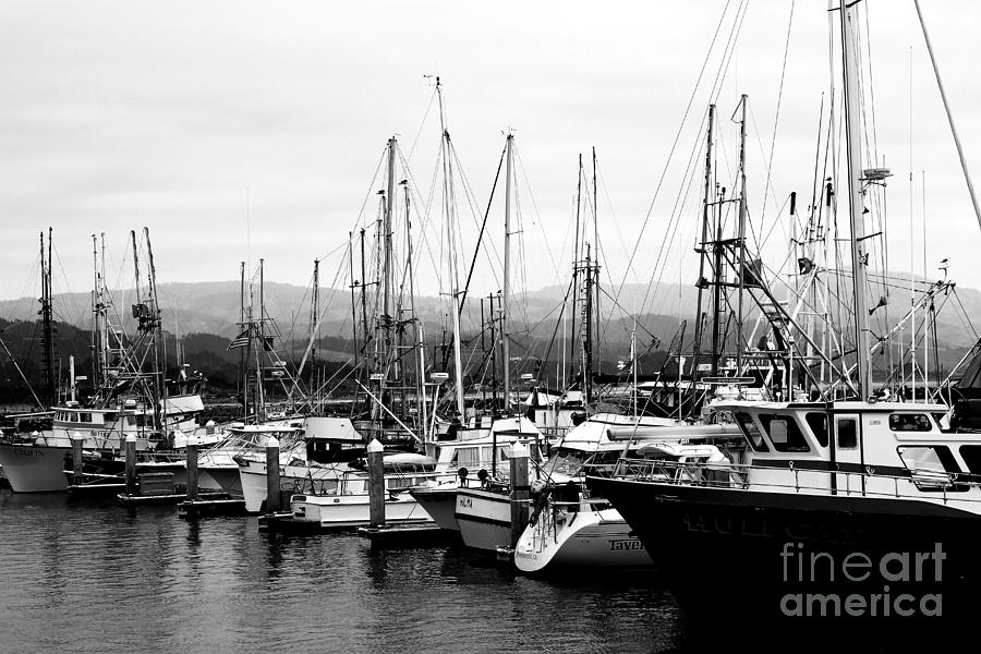 Fishing Boats . 7d8208 Photograph  - Fishing Boats . 7d8208 Fine Art Print