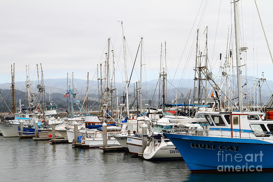 Fishing Boats In Pillar Point Harbor At Half Moon Bay California . 7d8208 Photograph  - Fishing Boats In Pillar Point Harbor At Half Moon Bay California . 7d8208 Fine Art Print