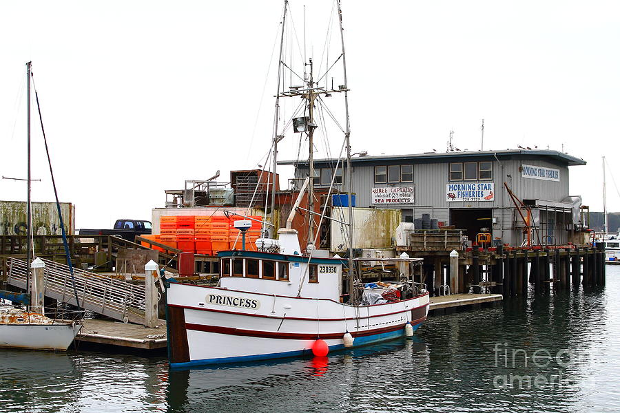 Fishing Boats In Pillar Point Harbor At Half Moon Bay California . 7d8210 Photograph  - Fishing Boats In Pillar Point Harbor At Half Moon Bay California . 7d8210 Fine Art Print