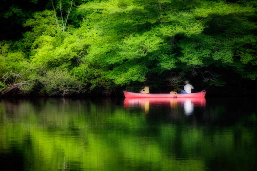 Fishing On Shady Photograph  - Fishing On Shady Fine Art Print