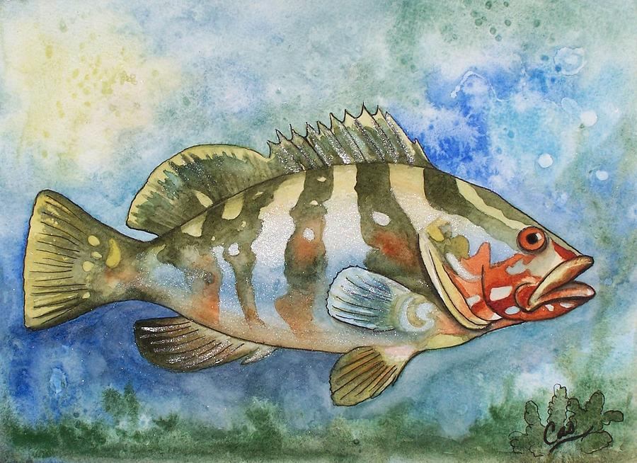 Fishy Fishy Painting  - Fishy Fishy Fine Art Print