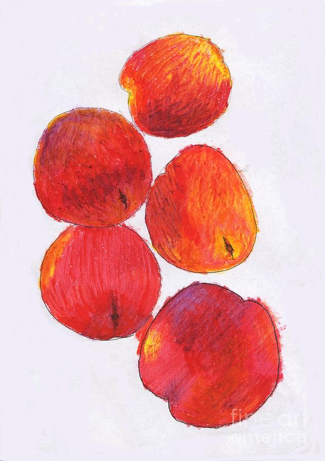 Five Nectarines  Drawing  - Five Nectarines  Fine Art Print