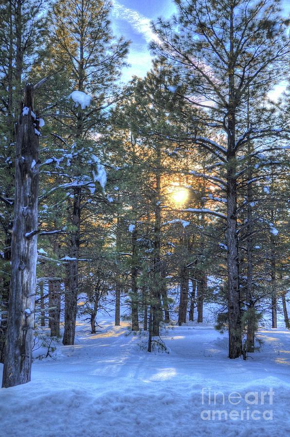 Flagstaff Sunset Photograph