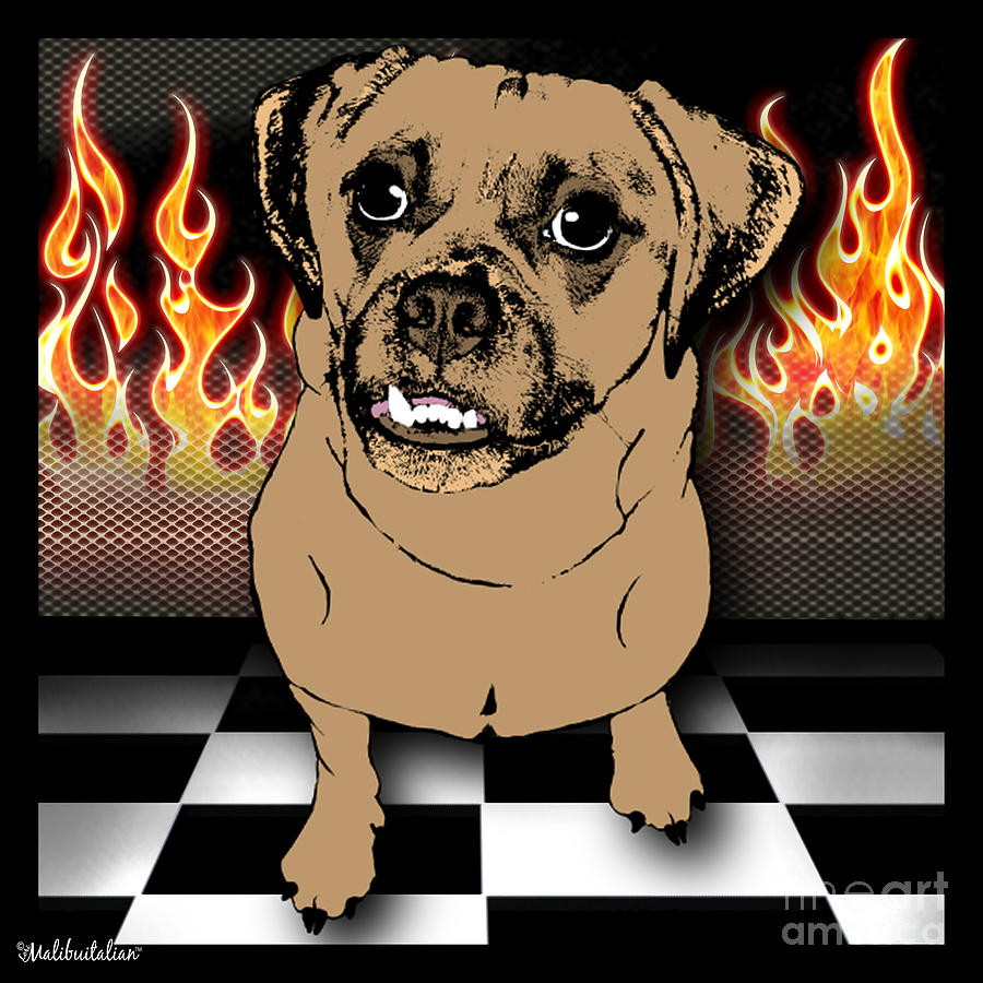 Flaming Adorable Puggle Digital Art  - Flaming Adorable Puggle Fine Art Print