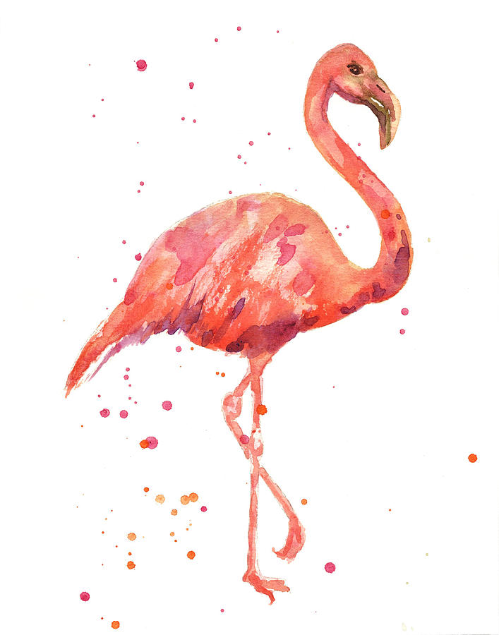 Flamingo Facing Right by Alison Fennell