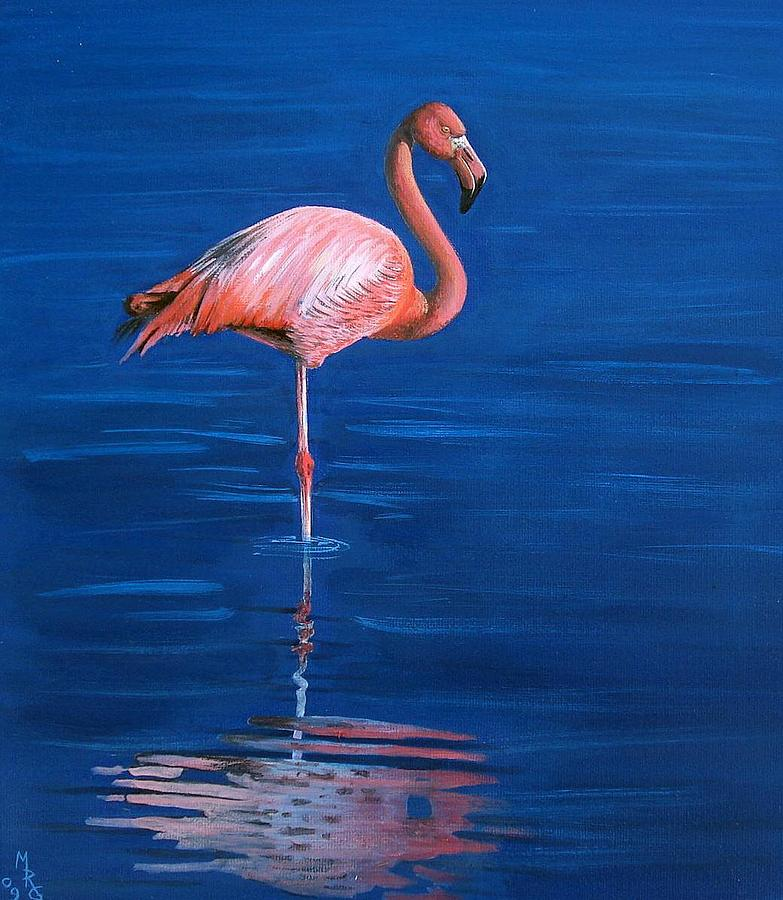 Flamingo by Martin Girolami