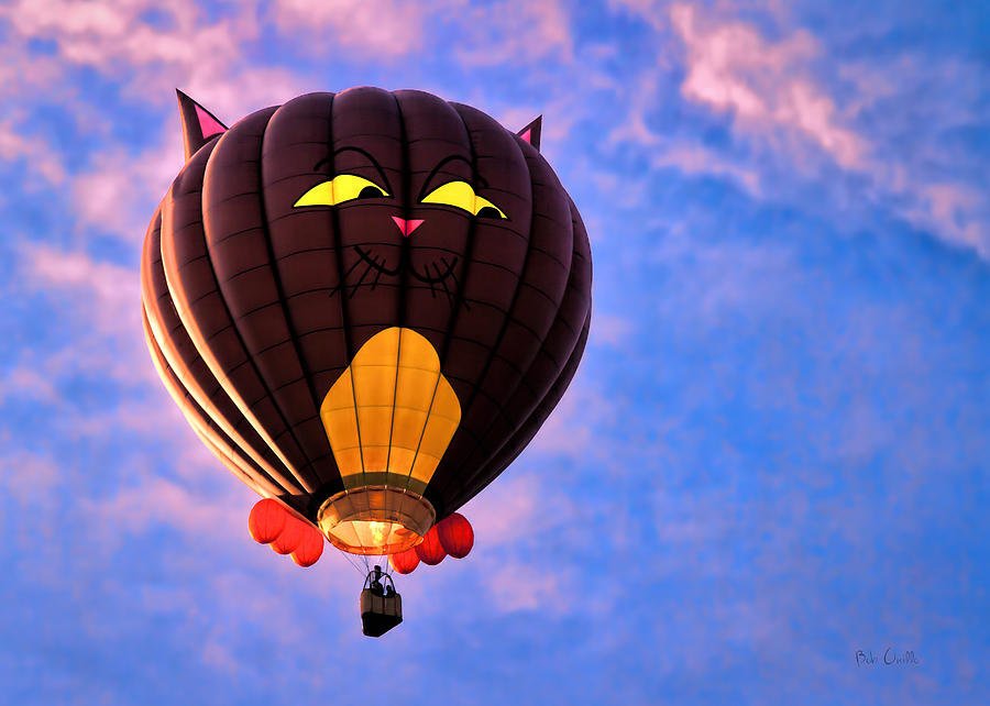 Floating Cat - Hot Air Balloon Photograph  - Floating Cat - Hot Air Balloon Fine Art Print