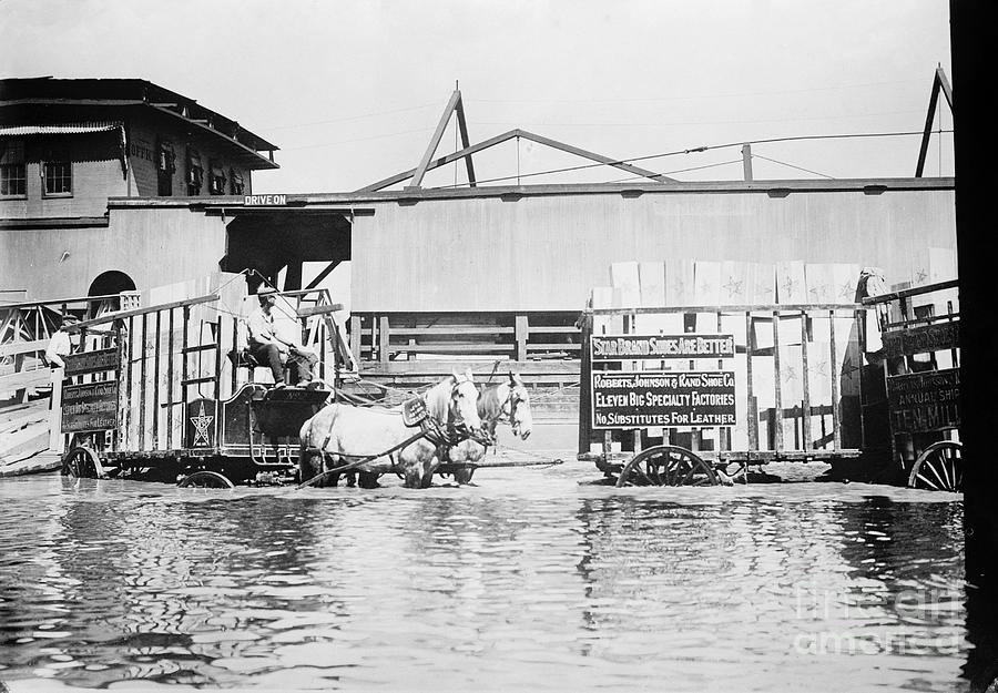 Flooding On The Mississippi River, 1909 Photograph