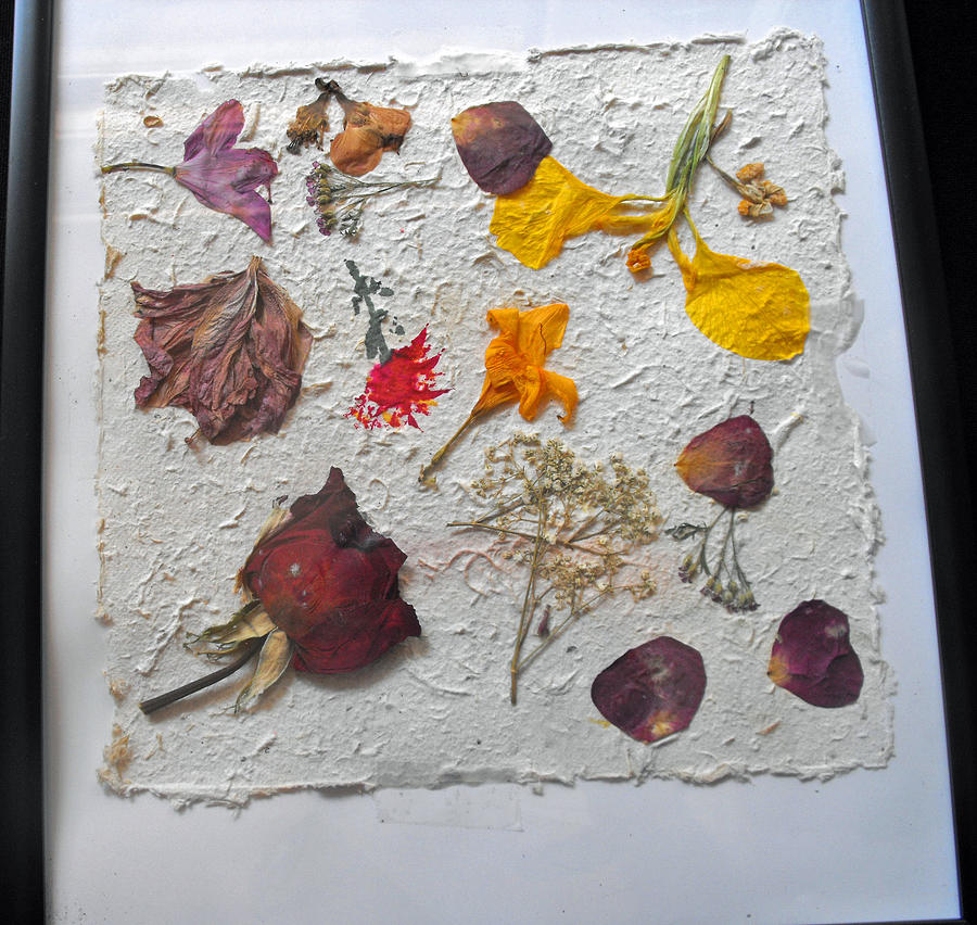 Floral Collage On Mullberry Handmade Paper Mixed Media  - Floral Collage On Mullberry Handmade Paper Fine Art Print