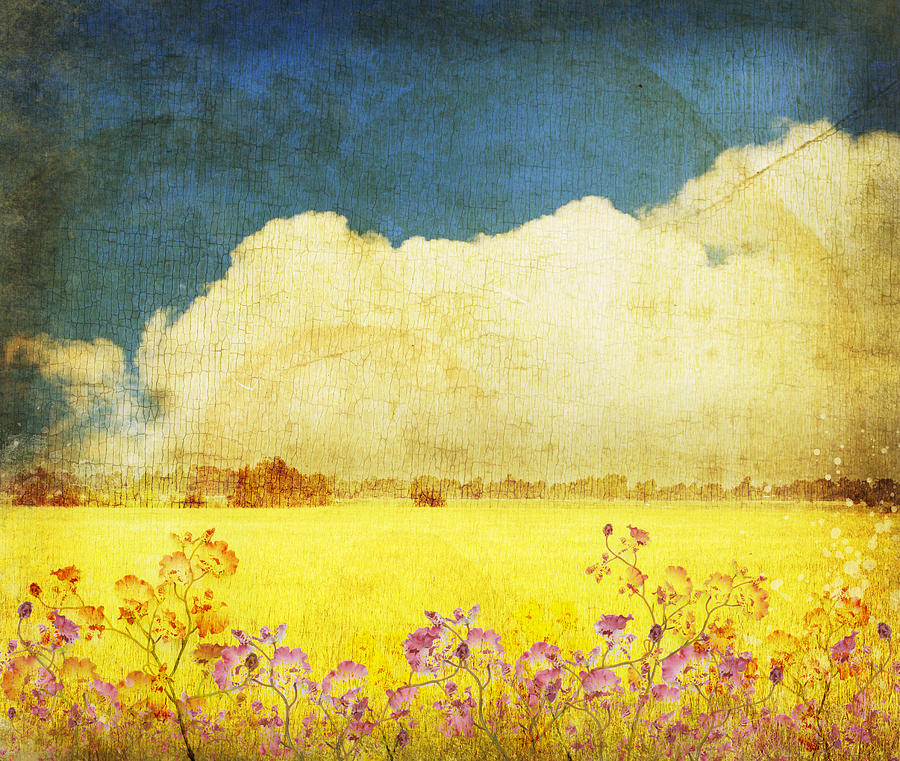Floral In Yellow Field Photograph  - Floral In Yellow Field Fine Art Print