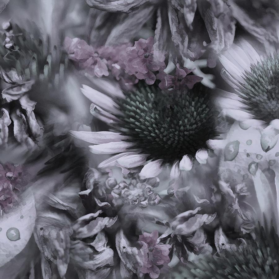 Floral Montage No.1 Photograph