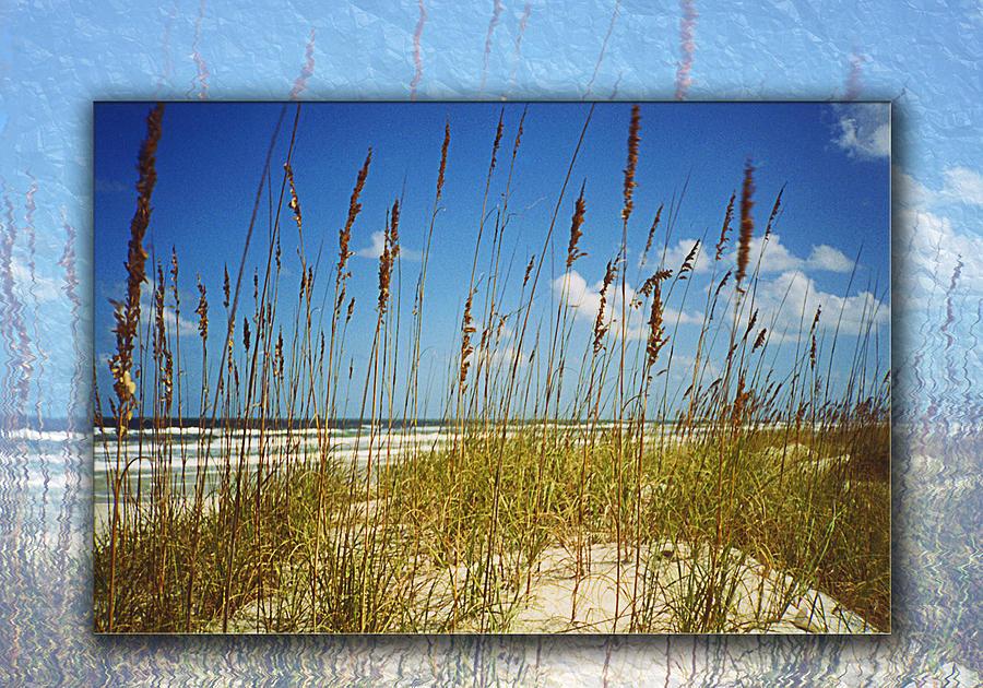 Florida Beach Photograph