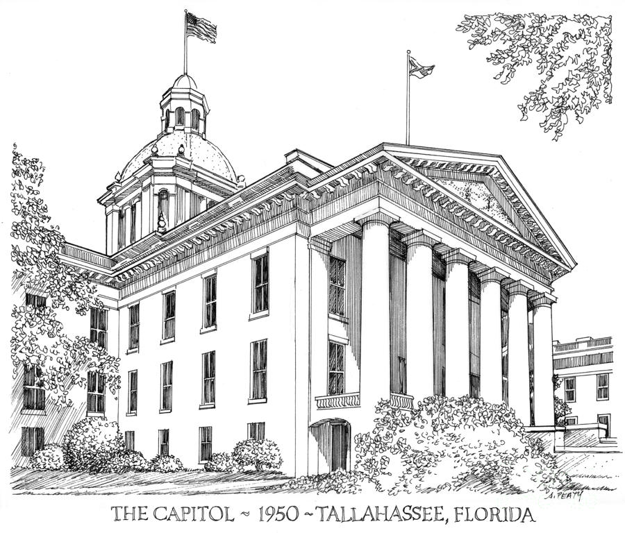 Florida Capitol 1950 Drawing  - Florida Capitol 1950 Fine Art Print
